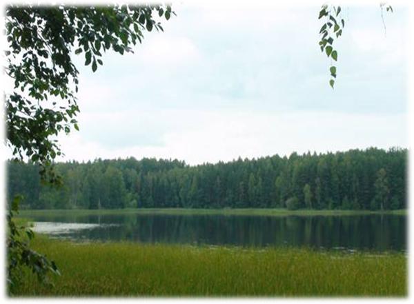 Озера – это регуляторы стока